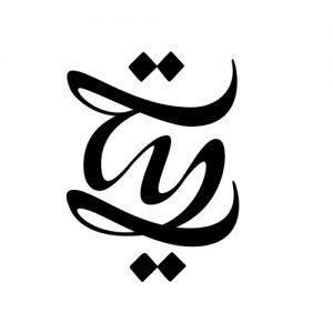 Tayyib Cayirli - Logo